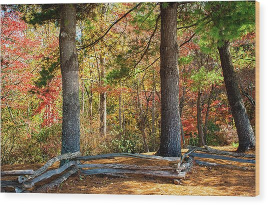Split Rail Fence And Autumn Leaves Wood Print