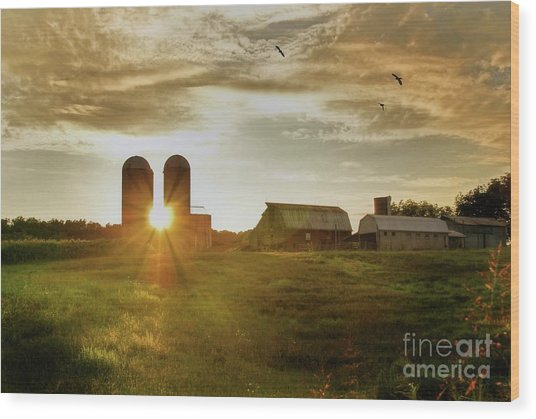 Split Silo Sunset Wood Print