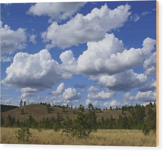 Spokane Cloudscape Wood Print
