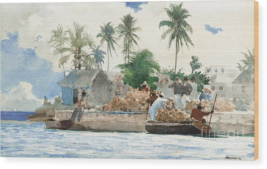 Sponge Fisherman In The Bahama Wood Print