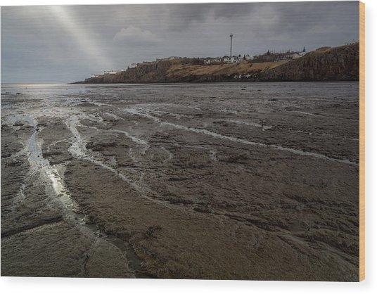 Spotlight On Iceland Wood Print
