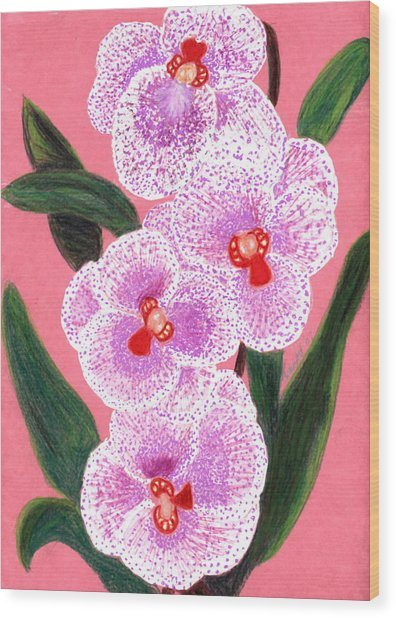 Spotted Orchid Against A Pink Wall Wood Print by Carliss Mora
