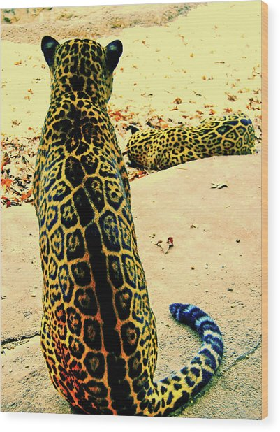 Spotted Siblings Wood Print by JAMART Photography