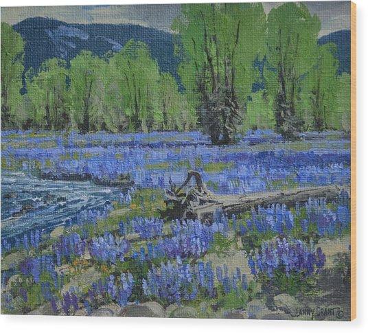Spread Creek Lupine Wood Print by Lanny Grant