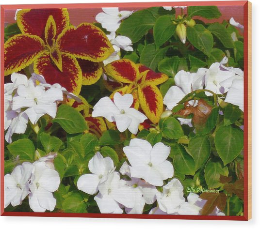 Spring Annuals Wood Print