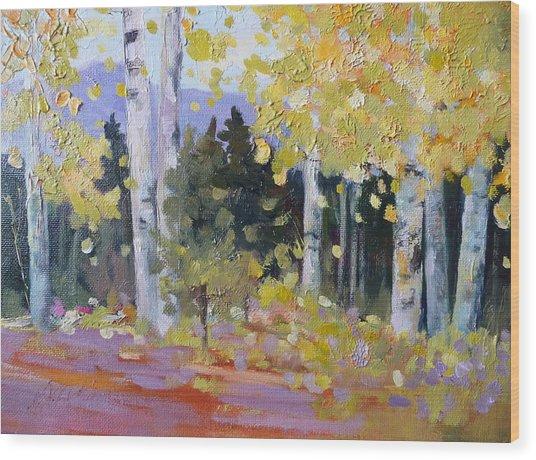 Spring Aspen In Colorado Wood Print by Xx X