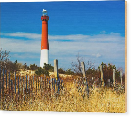 Spring At Barnegat Wood Print