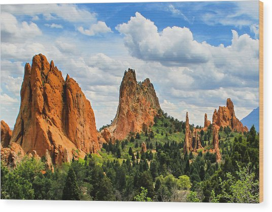 Spring At Garden Of The Gods Wood Print
