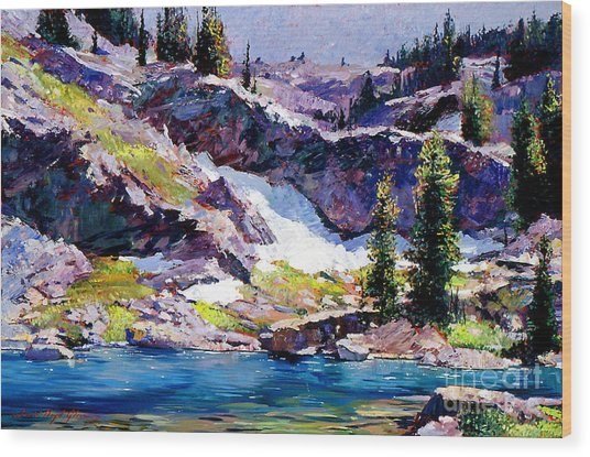 Spring At Jade Lake Wood Print by David Lloyd Glover