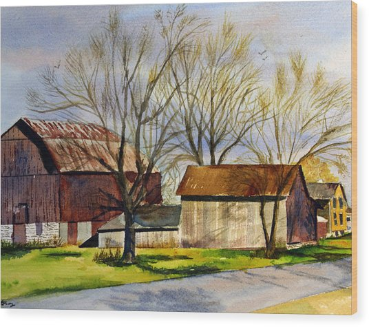 Spring At The Farm Wood Print by Tina Storey