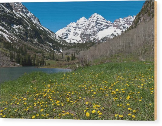 Spring At The Maroon Bells Wood Print