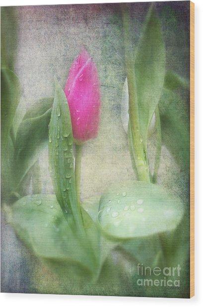 Spring Bath Wood Print