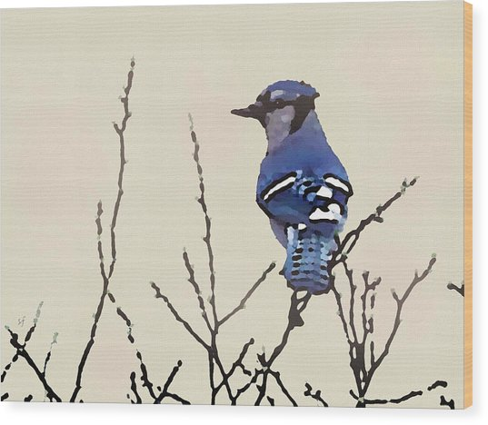 Wood Print featuring the digital art Spring Bluejay by Shelli Fitzpatrick