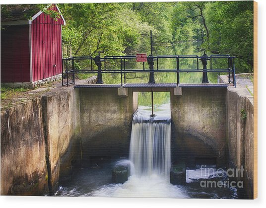 Spring Canal Lock Scene  Wood Print by George Oze