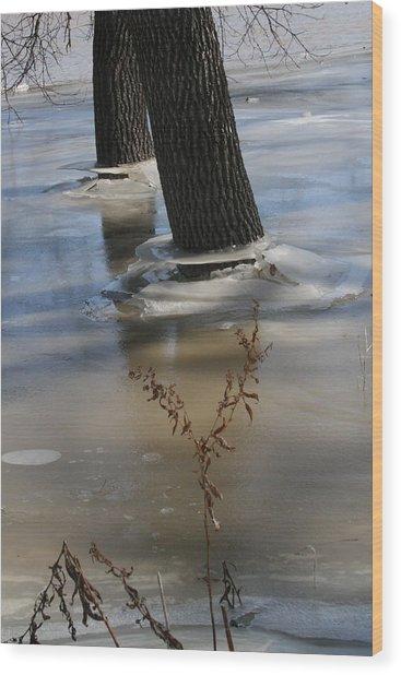 Spring Flood Wood Print