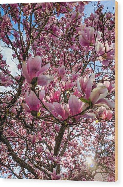Spring Fractals Wood Print