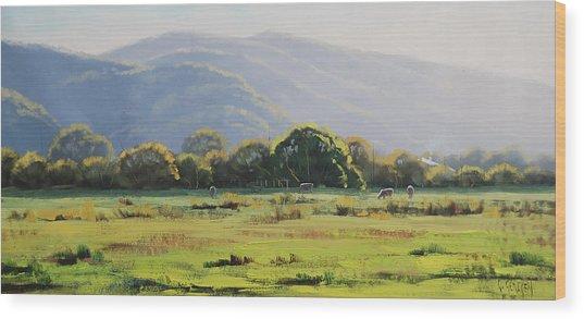 Spring Grazing Tumut Australia Wood Print
