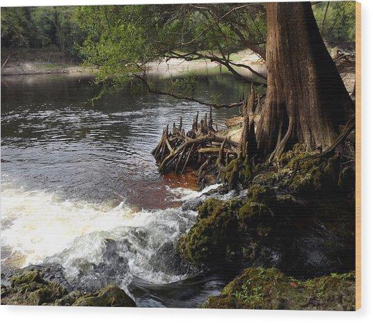 Spring Gushing Wood Print