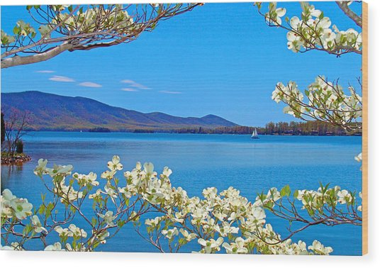 Spring Has Sprung 2 Smith Mountain Lake Wood Print
