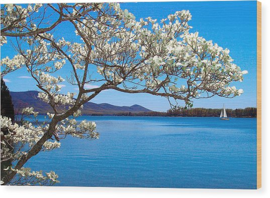 Spring Has Sprung Smith Mountain Lake Wood Print