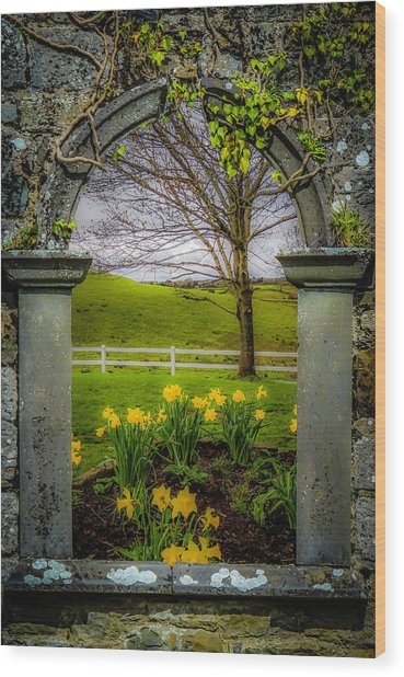 Wood Print featuring the photograph  Spring In Ballynacally, County Clare by James Truett