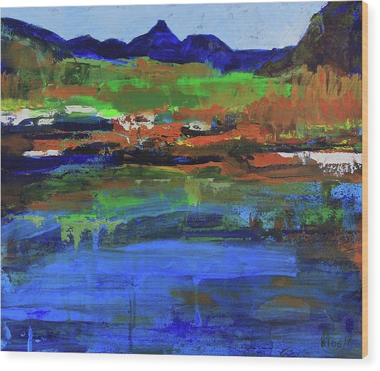 Spring In High Country Wood Print
