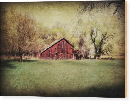 Spring In Nebraska Wood Print