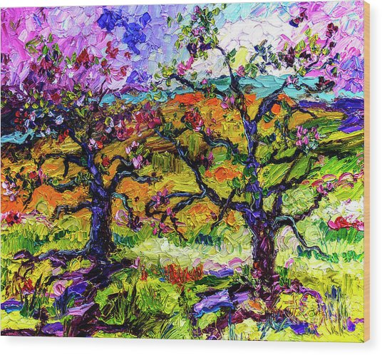 Spring In Provence Pink Blossom Trees Wood Print