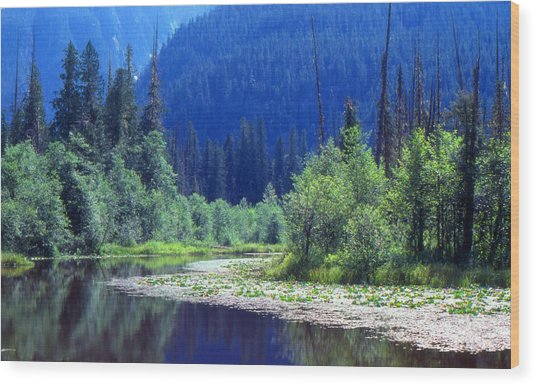 Spring In The Mountains 3  Wood Print by Lyle Crump