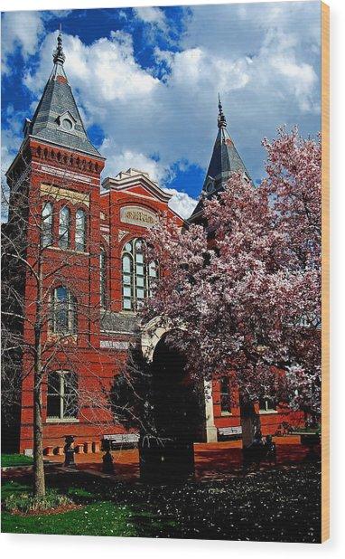 Spring In Washington Dc Wood Print