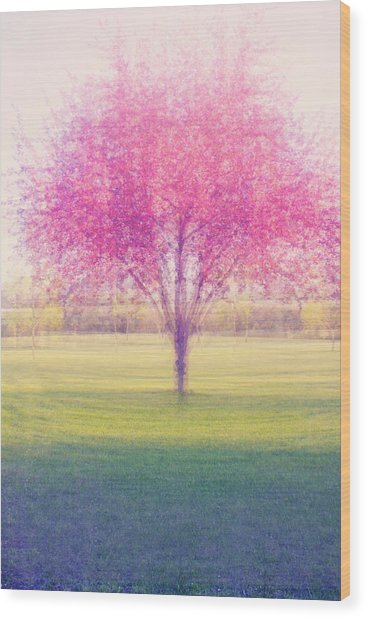 Spring Is A Blur Wood Print