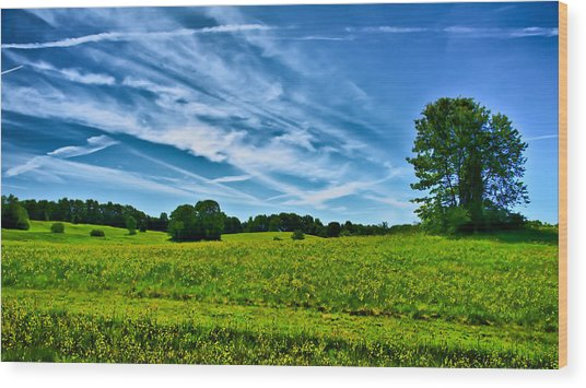 Spring Landscape In Nh Wood Print by Edward Myers