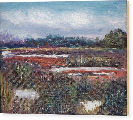 Spring Marsh Wood Print by Carol Sprovtsoff