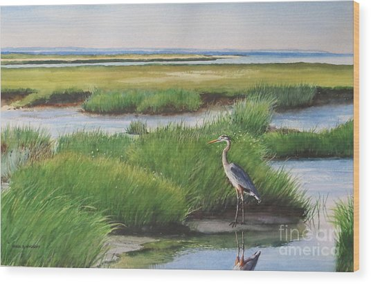 Spring Marsh Wood Print by Karol Wyckoff
