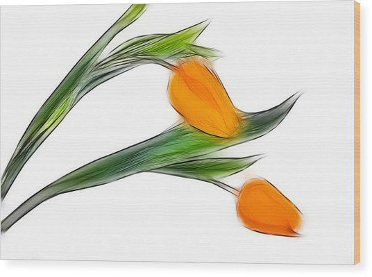 Spring Messenger Wood Print