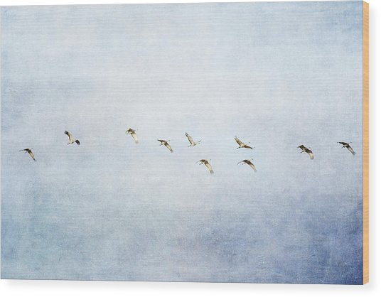 Spring Migration 2 - Textured Wood Print