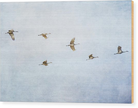 Spring Migration 4 - Textured Wood Print