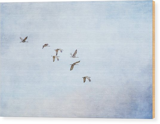 Spring Migration - Textured Wood Print
