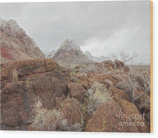 Spring Mountain Ranch Wood Print