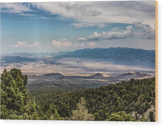 Wood Print featuring the photograph Spring Mountains Desert View by Michael Rogers