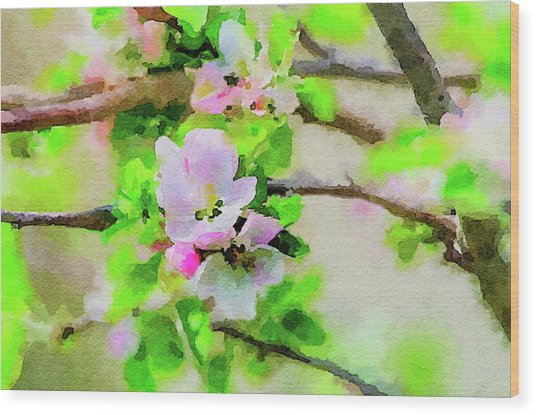 Spring On A Branch Wood Print