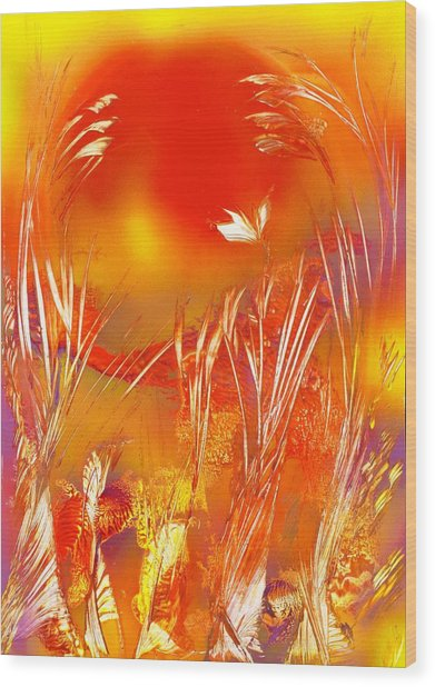 Spring On The Red Planet Wood Print