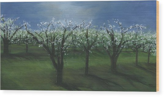 Spring Orchard Wood Print