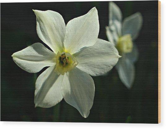 Spring Perennial Wood Print
