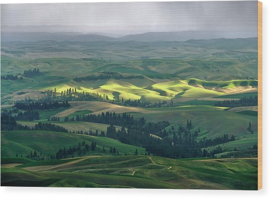 Spring Rain Falls On The Palouse Wood Print by Jerry McCollum