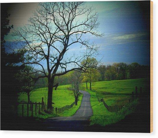Spring Road Wood Print by Michael L Kimble