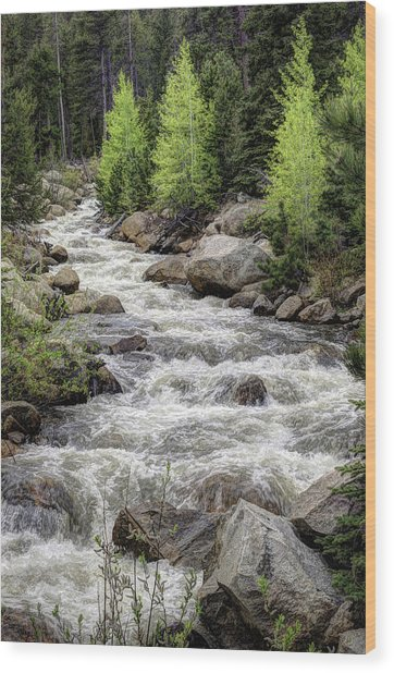 Spring Runoff Wood Print by G Wigler
