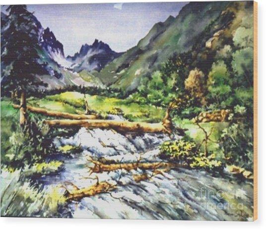 Spring Rush Wood Print by Marta Styk