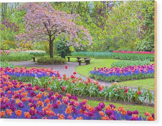 Spring Season Wood Print