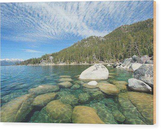 Spring Shores  Wood Print